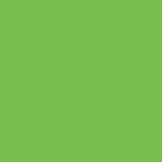 3M 2080 Gloss Light Green G616 Vinyl Wrap