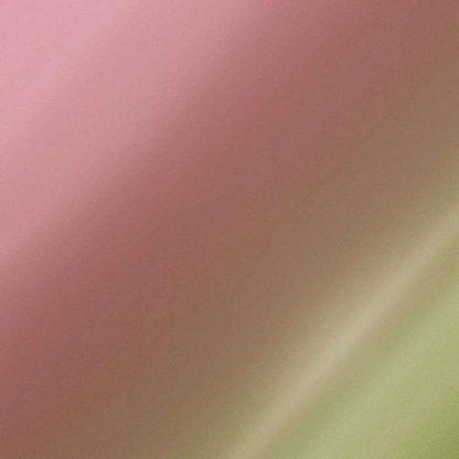 ORACAL 970RA Gloss Pearl Symphony 315 Shift Effect Vinyl Wrap